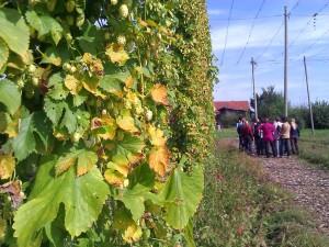 2012-09_Herbstbummel_012